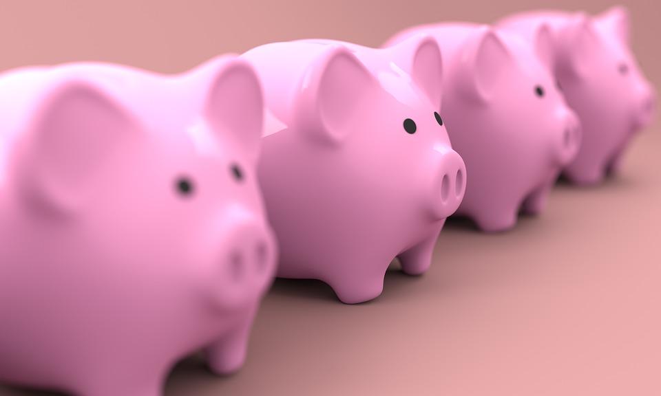 Piggy Bank image