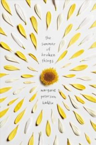 Book Cover - The Summer of Broken Things