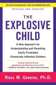 explosive child book cover