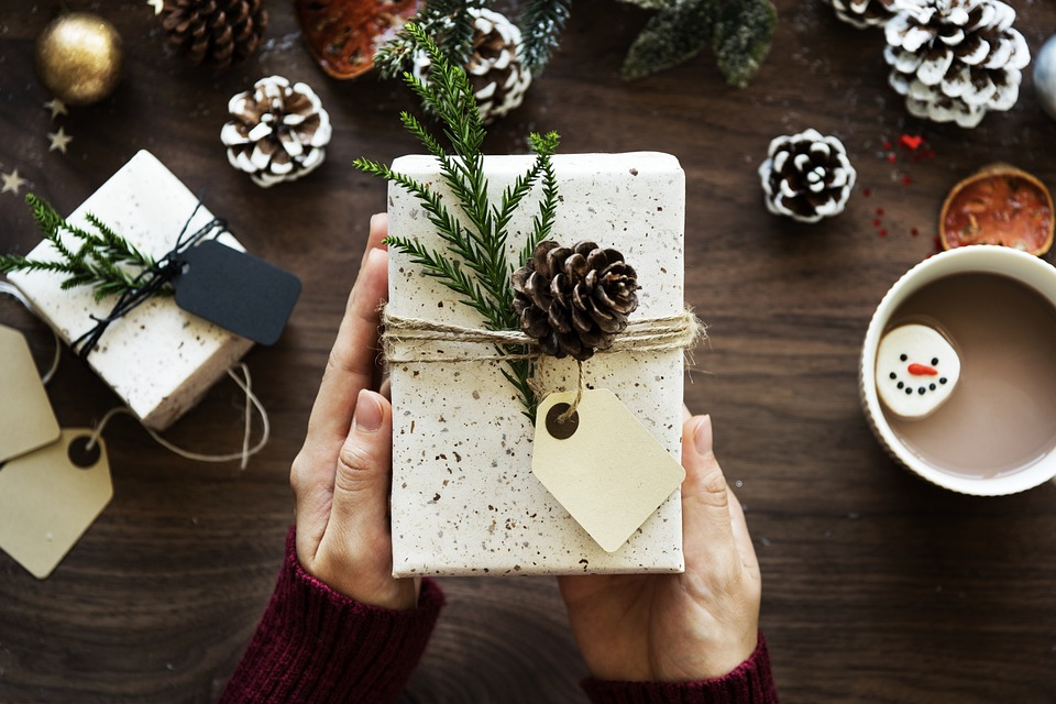Wrapped Gift and Pinecones Image
